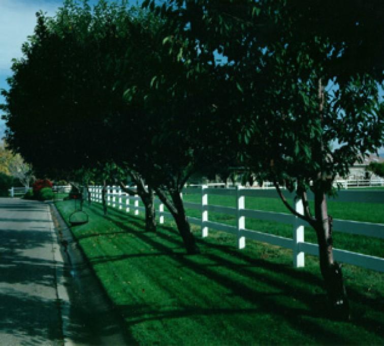 AmeriFence Corporation Kansas City - Vinyl Fencing, 3 Ranch Rail (953)