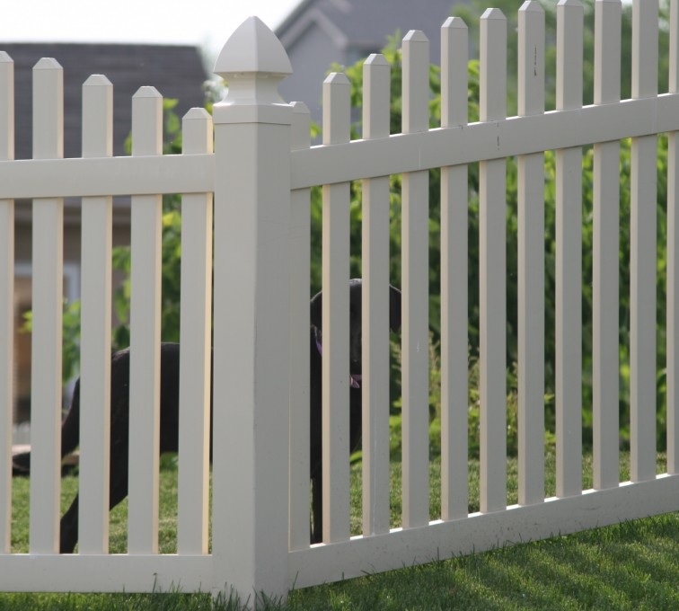 AmeriFence Corporation Kansas City - Vinyl Fencing, 4' overscallop picket 550